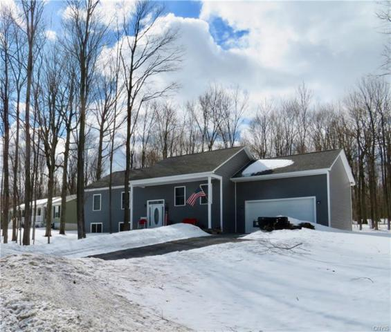 35417 Lewis Loop, Champion, NY 13619 (MLS #S1178869) :: Robert PiazzaPalotto Sold Team