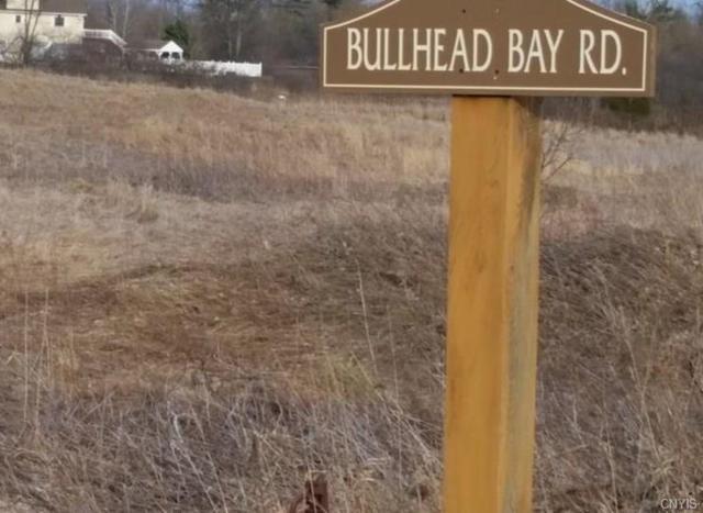 0 Bullhead Bay Road, Alexandria, NY 13607 (MLS #S1179907) :: Thousand Islands Realty