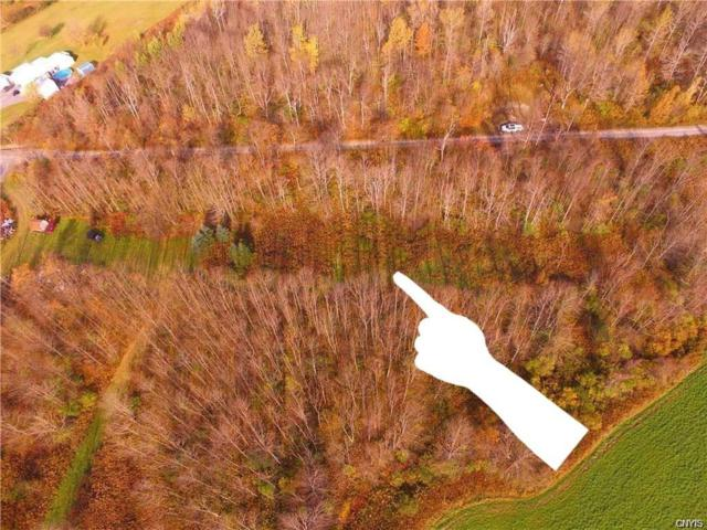 00 Wyss Road Road, Fenner, NY 13035 (MLS #S1180343) :: Thousand Islands Realty