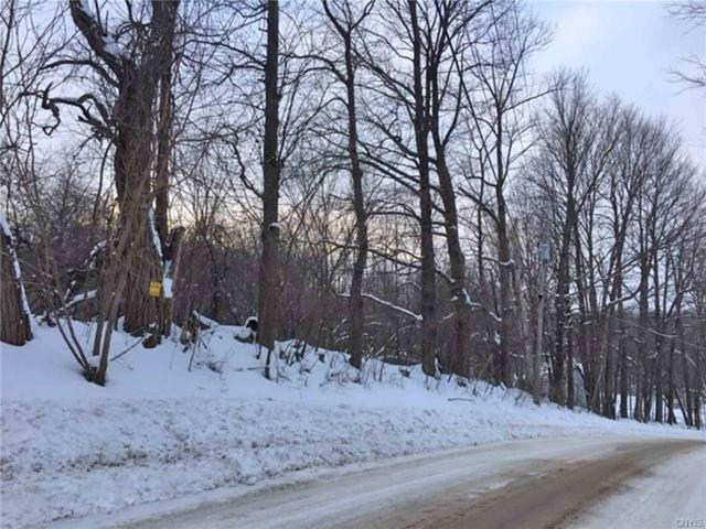 0 Camp Road, Litchfield, NY 13491 (MLS #S1180373) :: Thousand Islands Realty