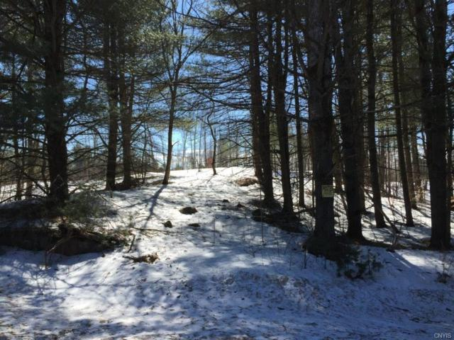 00 Old State Road, Croghan, NY 13327 (MLS #S1181096) :: The Chip Hodgkins Team