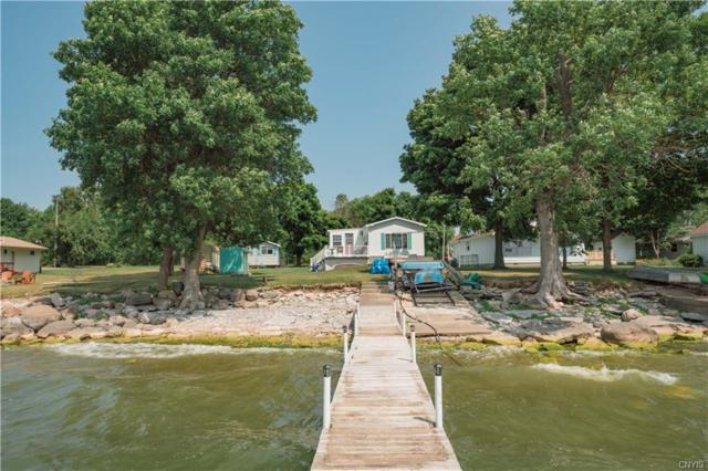 2564 Ponds Shore Drive, Cape Vincent, NY 13618 (MLS #S1181190) :: Thousand Islands Realty
