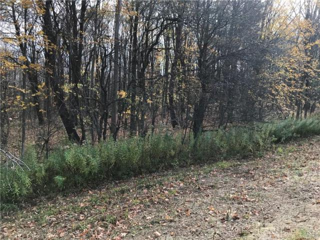 9777 Lot 2 Smith Road, Boonville, NY 13309 (MLS #S1181780) :: The Chip Hodgkins Team