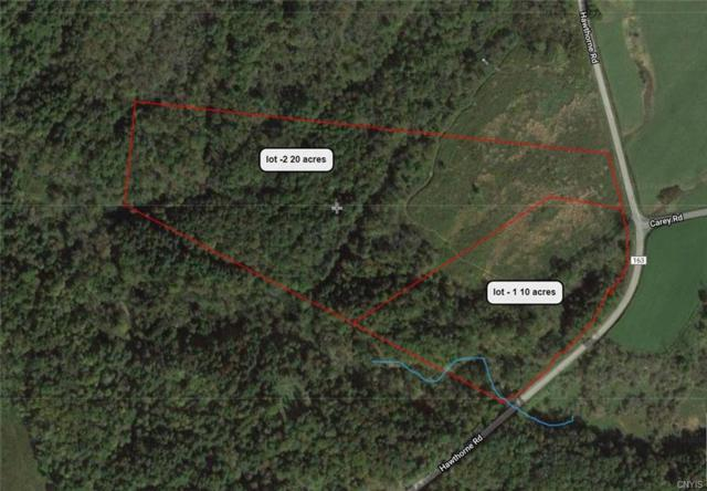 0 Hawthorne Road, Schuyler, NY 13350 (MLS #S1182131) :: Thousand Islands Realty