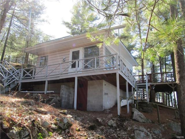 409 Indian Point Rd/Prvt Road, Hammond, NY 13679 (MLS #S1182137) :: Robert PiazzaPalotto Sold Team