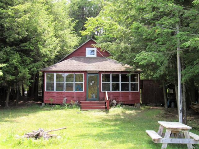 21 Tyler Road, Inlet, NY 13331 (MLS #S1182811) :: Thousand Islands Realty