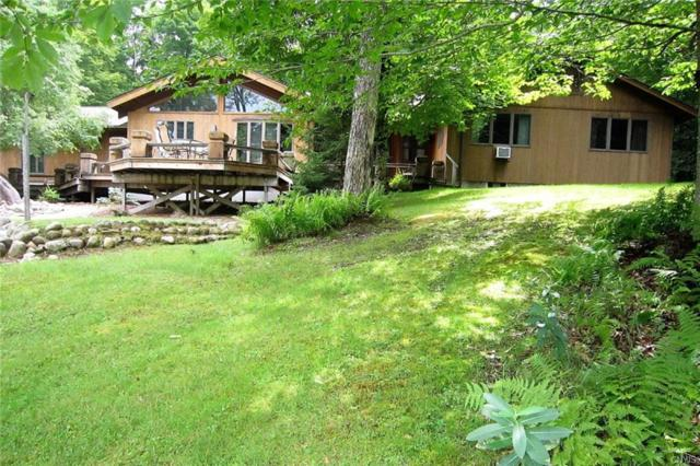 122 Deer Meadows Road, Webb, NY 13420 (MLS #S1184030) :: The Chip Hodgkins Team