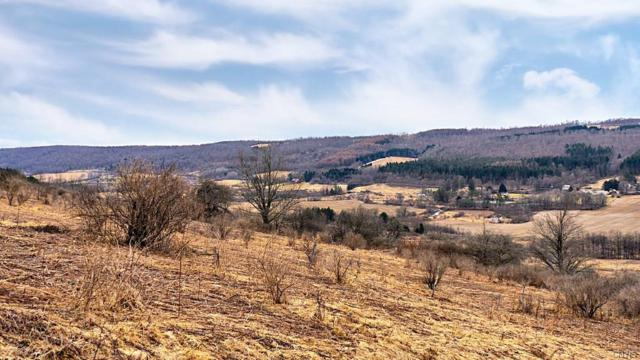 870 County Route 12, Pitcher, NY 13052 (MLS #S1184548) :: Updegraff Group