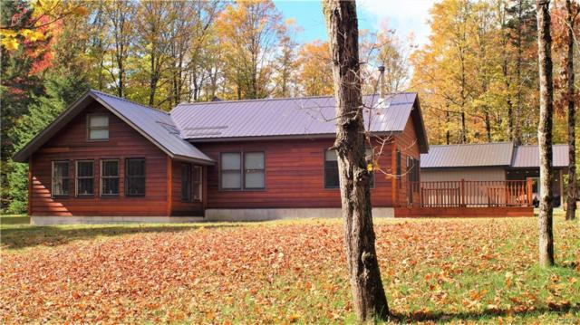 8585 Soft Maple Road, Croghan, NY 13327 (MLS #S1185775) :: BridgeView Real Estate Services