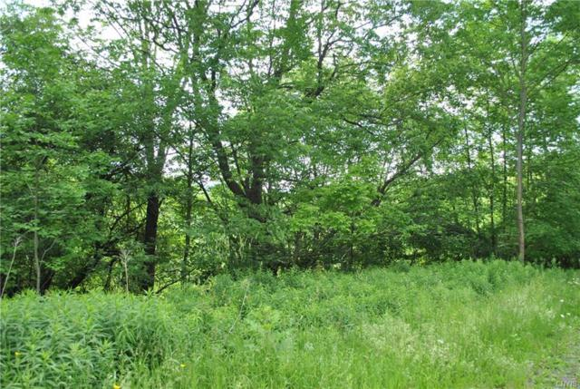 Lot D Purdy Road, Madison, NY 13402 (MLS #S1185966) :: Robert PiazzaPalotto Sold Team