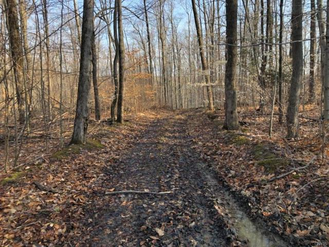 00 Tibbetts Hill Road, Belfast, NY 14711 (MLS #S1185969) :: Updegraff Group