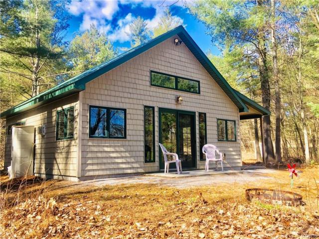 65 Riverside Drive, Fowler, NY 13642 (MLS #S1186020) :: Thousand Islands Realty