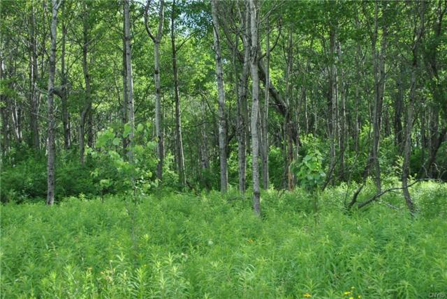 Lot C Purdy Road, Madison, NY 13402 (MLS #S1186194) :: Robert PiazzaPalotto Sold Team