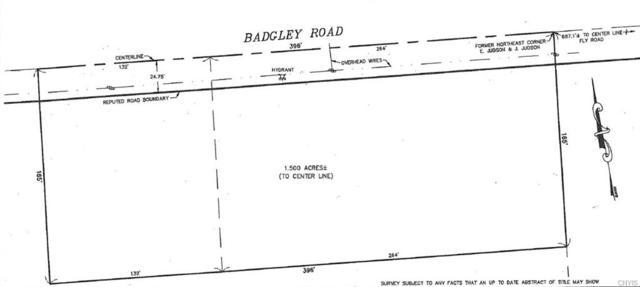 6588 Badgley Road, Dewitt, NY 13057 (MLS #S1186593) :: Robert PiazzaPalotto Sold Team