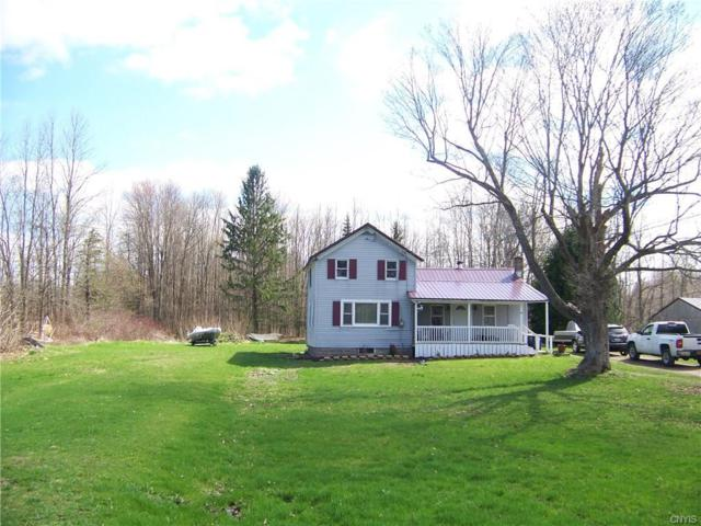 1998 Lamson Road, Lysander, NY 13135 (MLS #S1187194) :: Robert PiazzaPalotto Sold Team