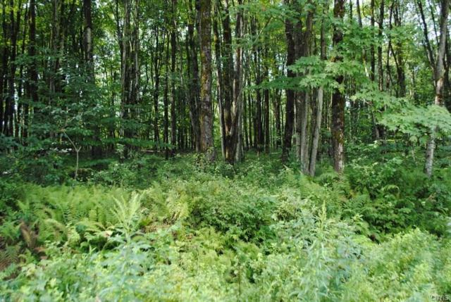 Lot 4 Fox Brook Road, Redfield, NY 13437 (MLS #S1187247) :: Thousand Islands Realty