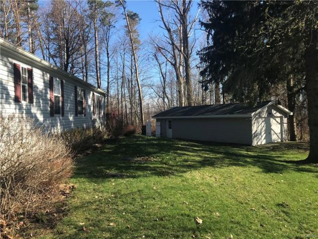 11 Country Club Lane, Sandy Creek, NY 13145 (MLS #S1187267) :: Robert PiazzaPalotto Sold Team
