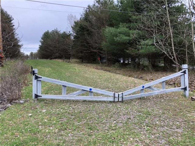 0 Johnny Cake Hill Road, Madison, NY 13346 (MLS #S1187511) :: Robert PiazzaPalotto Sold Team