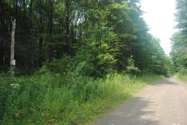Lot 2 Fox Brook Road, Redfield, NY 13437 (MLS #S1188037) :: MyTown Realty