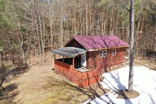11493 State Route 812, Croghan, NY 13327 (MLS #S1188350) :: Robert PiazzaPalotto Sold Team