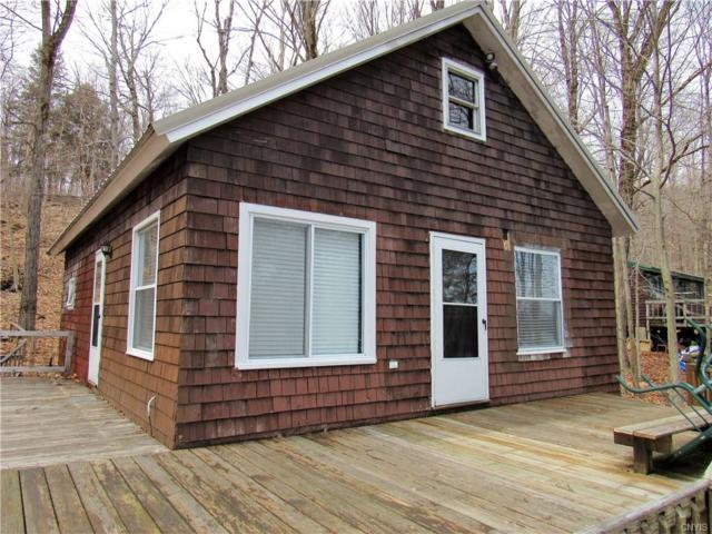 1133 Hunt Road, Forestport, NY 13338 (MLS #S1188629) :: Thousand Islands Realty