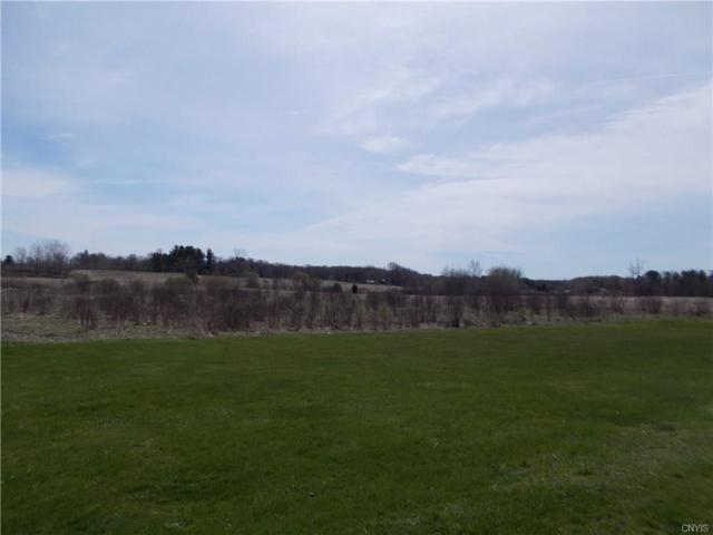 2920 State Route 3, Volney, NY 13069 (MLS #S1188633) :: MyTown Realty