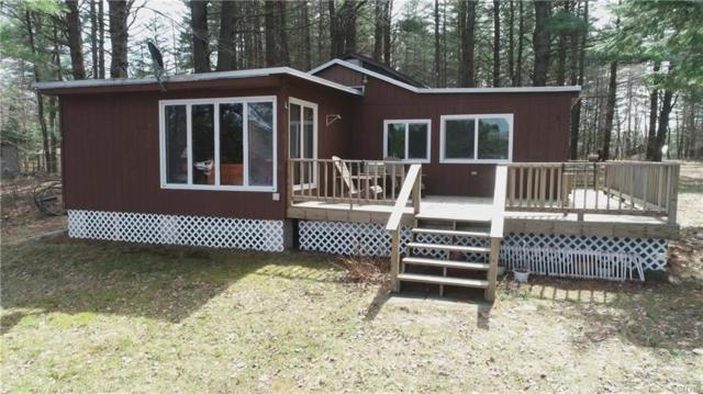 48 Old Ice House Road, Forestport, NY 13494 (MLS #S1189587) :: Thousand Islands Realty