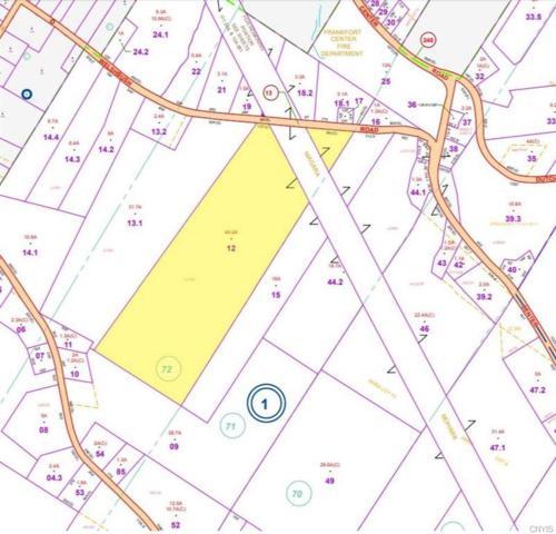 0 Welshbush Road, Frankfort, NY 13340 (MLS #S1190394) :: 716 Realty Group