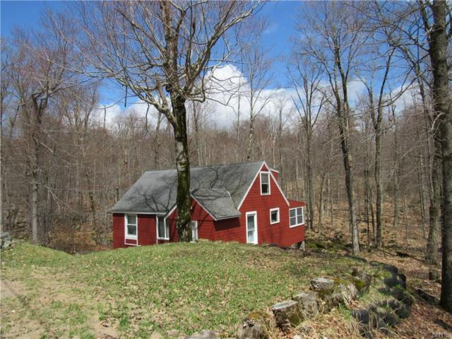 135 Limekiln Road, Inlet, NY 13360 (MLS #S1190503) :: BridgeView Real Estate Services