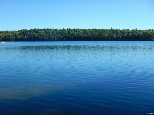 0 Grass Lake Road, Theresa, NY 13691 (MLS #S1193231) :: Thousand Islands Realty