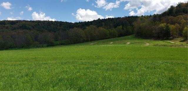 4160 Co Hwy 18, Edmeston, NY 13335 (MLS #S1194010) :: Lore Real Estate Services
