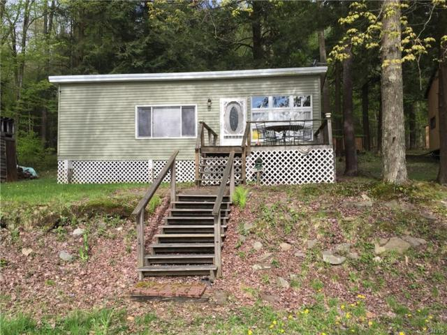 1312 Melody Lane, Willet, NY 13863 (MLS #S1194601) :: Updegraff Group