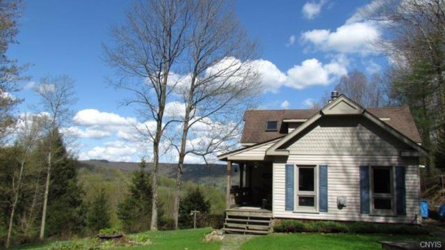 5800 Potter Hill Road, Taylor, NY 13040 (MLS #S1194812) :: Updegraff Group
