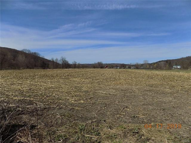 0 State Route 38, Locke, NY 13118 (MLS #S1195210) :: Thousand Islands Realty