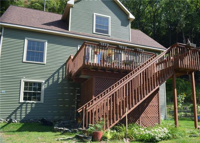 429 Beam Hill Road, Dryden, NY 13068 (MLS #S1195784) :: Thousand Islands Realty