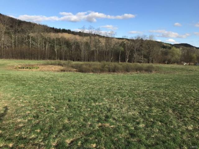 00 Co Hwy 7, Otego, NY 13825 (MLS #S1195905) :: The Chip Hodgkins Team