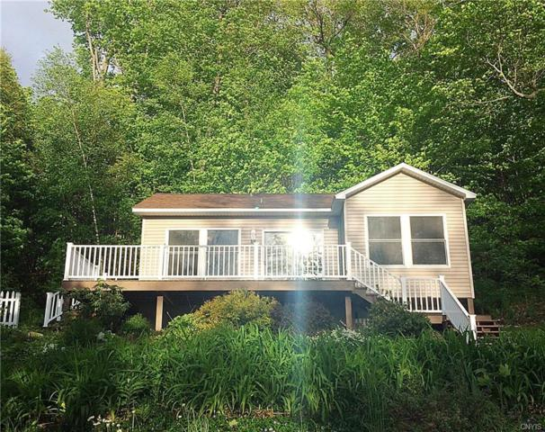230 Seber Shores Road, Sandy Creek, NY 13145 (MLS #S1196415) :: The Chip Hodgkins Team