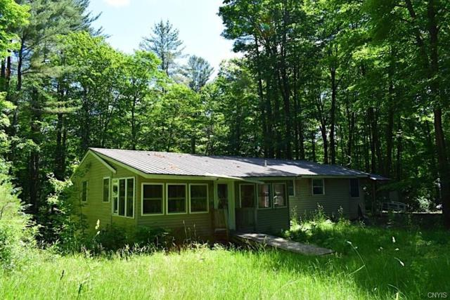 1872 State Route 13, Albion, NY 13302 (MLS #S1197478) :: MyTown Realty