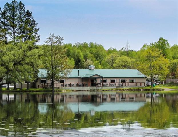 1307 E Lake Road, Summerhill, NY 13045 (MLS #S1197774) :: The Glenn Advantage Team at Howard Hanna Real Estate Services