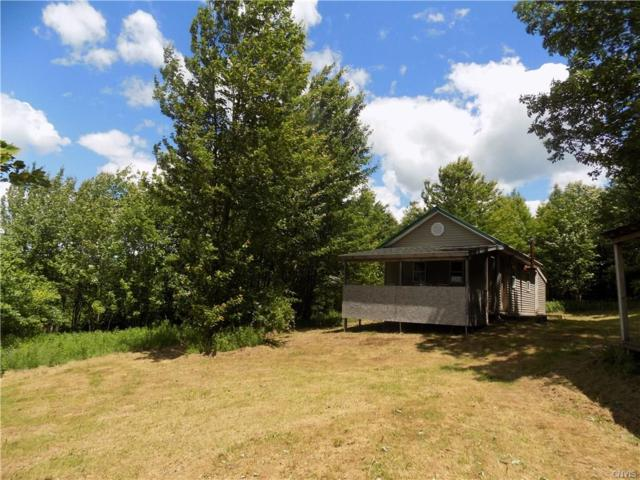 330 Edwards Hill Road, Lisle, NY 13797 (MLS #S1197916) :: Thousand Islands Realty