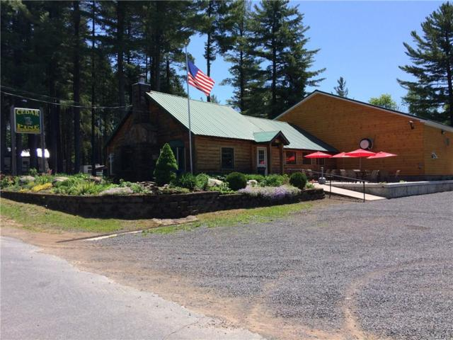 1132 Comins Road, Osceola, NY 13437 (MLS #S1198748) :: Thousand Islands Realty