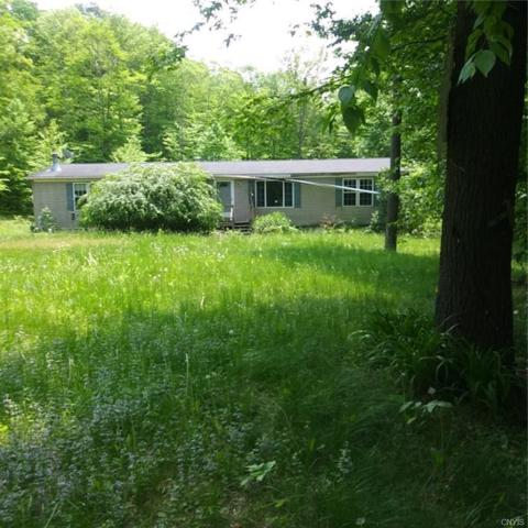 333 Reservoir Hill Road, Candor, NY 13743 (MLS #S1199449) :: 716 Realty Group