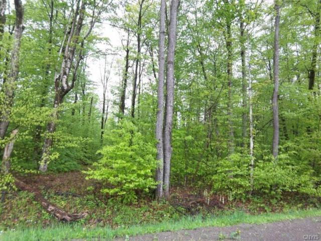 0 Dairy Hill Road, Salisbury, NY 13454 (MLS #S1199725) :: The Glenn Advantage Team at Howard Hanna Real Estate Services