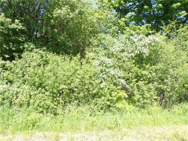 X County Rte. 179 Road, Clayton, NY 13624 (MLS #S1201420) :: BridgeView Real Estate Services