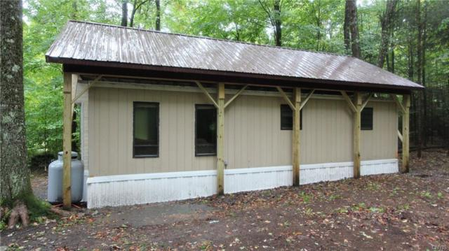 8753 Number Four Road, Watson, NY 13367 (MLS #S1201512) :: BridgeView Real Estate Services