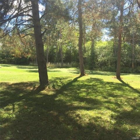 31132 County Route 179, Clayton, NY 13622 (MLS #S1202755) :: BridgeView Real Estate Services