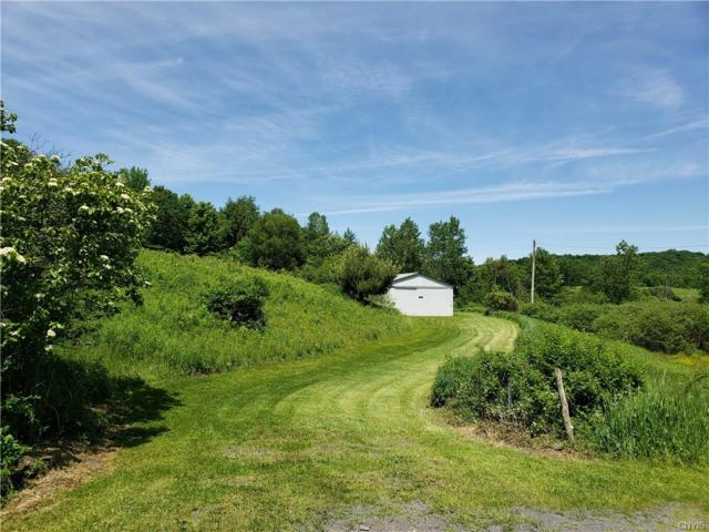 155 Wright Road, Exeter, NY 13491 (MLS #S1203037) :: 716 Realty Group