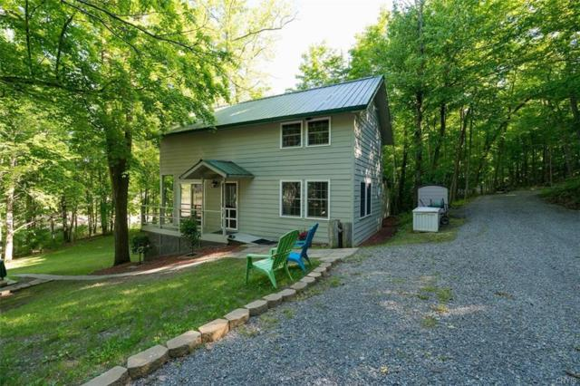 46891 Langlois Drive, Alexandria, NY 13607 (MLS #S1203097) :: Thousand Islands Realty