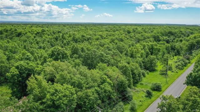 0 Co Route 179, Lyme, NY 13622 (MLS #S1203979) :: Robert PiazzaPalotto Sold Team