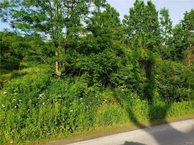 0 County Hwy 120 Road, Oppenheim, NY 13329 (MLS #S1204017) :: The Chip Hodgkins Team